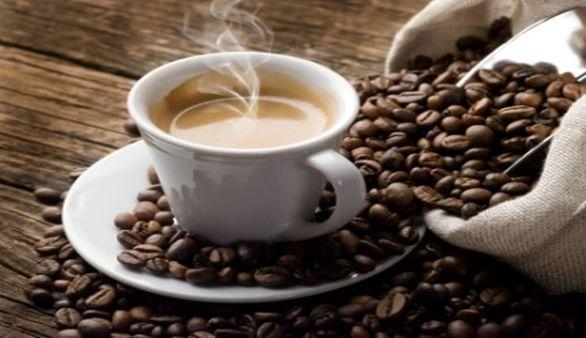 Die Kultivierung des Kaffees
